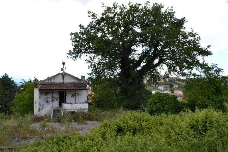 Immobili in vendita in molise casa nel bosco palata fattorie a 099 - Case in vendita ...