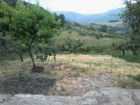 10 Land for sale