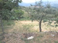 14 Land for sale